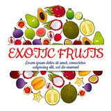 Exotic fresh fruits vector poster. Exotic fruits poster of vector tropical whole and half cut sliced juicy fruits orange, papaya, durian, guava, carambola Royalty Free Stock Photos