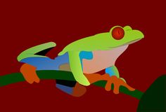 Exotic frog 2. Exotic colorful frog on red background stock illustration