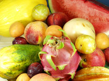 Exotic fruit. Tropical and exotic asian fruits Stock Image