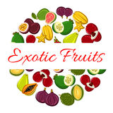 Exotic fruit circle poster for healthy food design Royalty Free Stock Photo