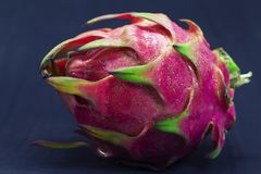 Exotic fruit Dragonfruit with pink and green skin on black background. Royalty Free Stock Photos
