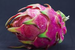 Exotic fruit Dragonfruit with pink and green skin on black background. Royalty Free Stock Photography