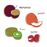 Exotic fruit flavor drawings set Royalty Free Stock Image