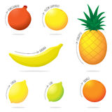 Exotic Fruit Illustration Set Stock Photography