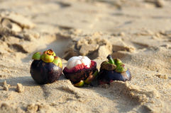 Exotic fruit Mangosteen on the beach of Phuket, Thailand Royalty Free Stock Photo