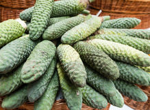Exotic fruit monstera deliciosa in Madeira Royalty Free Stock Photography