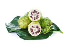 Exotic Fruit - Noni fruit Royalty Free Stock Photo