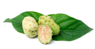 Exotic Fruit - Noni with  leaf on white background Royalty Free Stock Photo