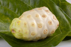 Exotic Fruit Noni on white background Royalty Free Stock Photo
