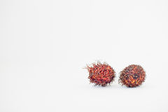 Exotic fruit rambutan Nephelium lappaceum isolated on white. Background. Healthy eating dieting food Royalty Free Stock Images