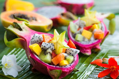 Exotic fruit salad. Served in half a dragon fruit Royalty Free Stock Images