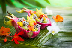 Exotic fruit salad royalty free stock image