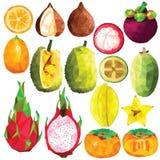 Exotic fruit set Stock Photo