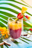 Exotic fruit smoothie Stock Photos