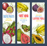 Exotic fruit sweet tropical food sketch banner set Royalty Free Stock Images