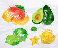 Exotic fruit watercolor mango, avocado, carambola. Exotic fruit set drawn watercolor blots and stains with a spray mango, avocado, carambola, lime Royalty Free Stock Photography
