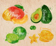 Exotic fruit watercolor mango, avocado, carambola Stock Photos