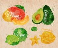 Exotic fruit watercolor mango, avocado, carambola. Exotic fruit set drawn watercolor blots and stains with a spray mango, avocado, carambola, lime in kraft Stock Photos