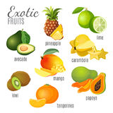 Exotic fruits avocado, pineapple, papaya, tangerine, mango, kiwi, carambola, lime Royalty Free Stock Image