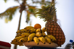 Exotic fruits on a background of palm trees and the shore. A picnic in a tropical country on the beach. India. Exotic fruits on a background of palm trees and Stock Photos