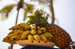 Exotic fruits on a background of palm trees and the shore. A picnic in a tropical country on the beach. India. Exotic fruits on a background of palm trees and Stock Image