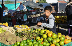 Exotic fruits at farmer´s market, Colombia Stock Photography
