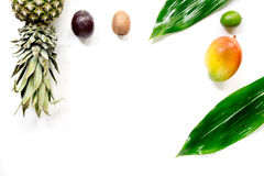 Exotic fruits food concept. Mangosteen, mango, kiwi, pineapple on white background top view copyspace Stock Image