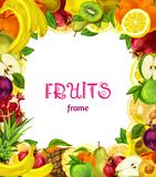 Exotic fruits frame Royalty Free Stock Photography