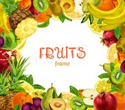 Exotic fruits frame Royalty Free Stock Images