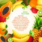 Exotic fruits frame Stock Photos
