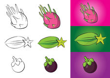 Exotic fruits illustrations Stock Photos