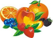 Exotic fruits isolated Stock Image
