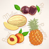 Exotic fruits - 2 Royalty Free Stock Image