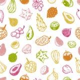 Exotic Fruits, Pattern stock illustration