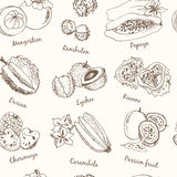 Exotic Fruits Seamless Pattern. Stock Images