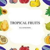 Exotic fruits seamless pattern of  tropical mango and grapefruit or orange, carambola and dragon fruit, guava and longan, fi. Gs or rambutan, passion fruit and Royalty Free Stock Photos