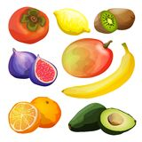 Exotic Fruits Set Stock Photo