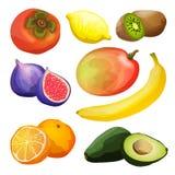 Exotic Fruits Set stock illustration