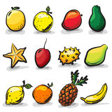 Exotic fruits sketch drawing  set Stock Photos