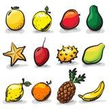 Exotic fruits sketch drawing  set Stock Photos