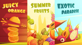 Exotic Fruits Vertical Banners Cartoon Poster. Exotic juicy tropical fruits vertical banners composition poster for summer vacation travelers cartoon style Royalty Free Stock Image