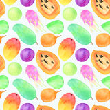 Exotic fruits watercolor illustration. Seamless pattern Stock Photography