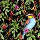 Exotic fuchsia flowers and jungle bird on black background. Seamless floral pattern. Watercolor Stock Photography