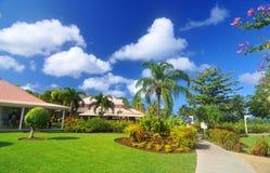 Free Exotic Garden Stock Image - 50753311