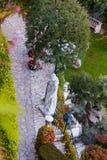 Exotic garden Stock Photography