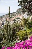 The Exotic Garden of Monaco Stock Photos