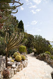 The Exotic Garden of Monaco Stock Photography