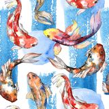 Exotic goldfish wild fish pattern in a watercolor style. Stock Photo