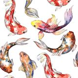 Exotic goldfish wild fish pattern in a watercolor style. Stock Photography