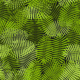 Exotic green palm leaves seamless pattern Stock Photography